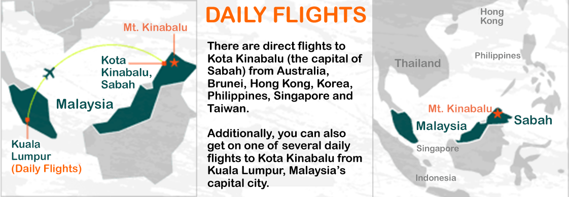 daily-flight